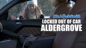 locked out of car Aldergrove